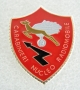 Distintivo Carabinieri Radiomobile
