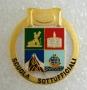 Distintivo Scuola Sottufficiali Guardia di Finanza