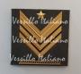 Gradi velcro Brigadiere Capo Carica Speciale